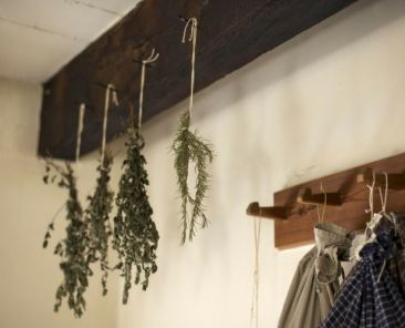 Herbs hanging from hooks